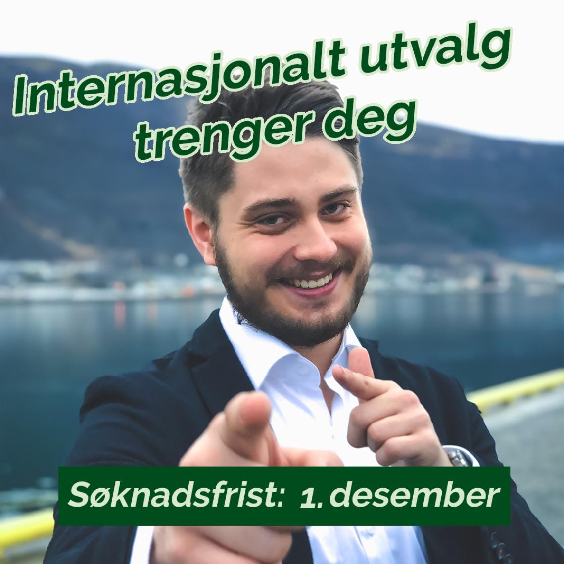 Internasjonalt utvalg trenger deg!